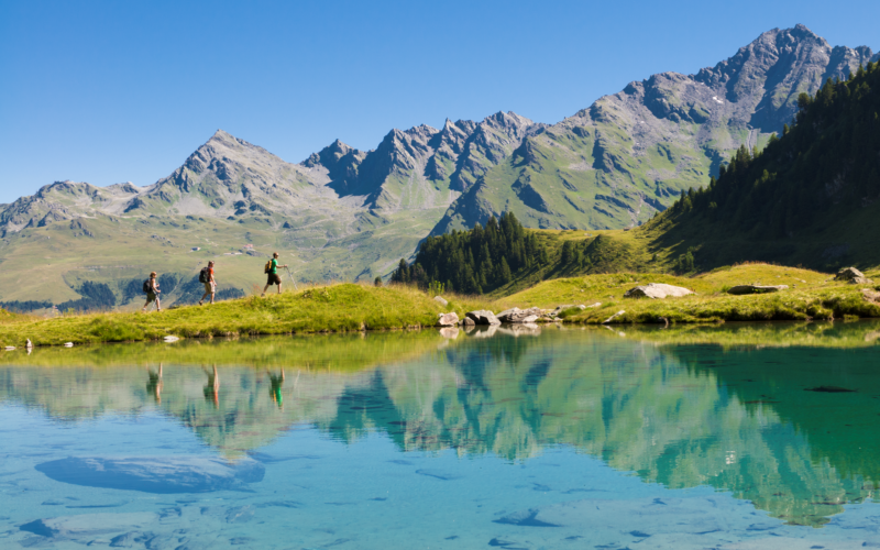 Why Alpine Property is a Great Investment
